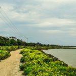 6 שבילי הליכה בטבע ומסלולים יפהפיים לכל המשפחה בעיר לרנקה