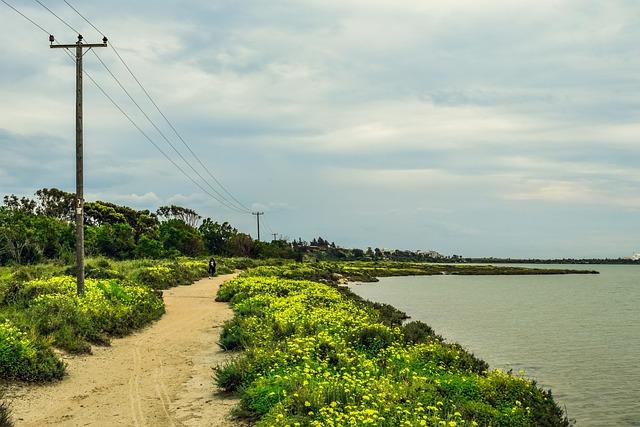 מסלול ההליכה לאורך אגם המלח של לרנקה