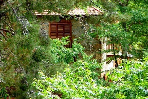 הכפר Amiantos שבו נמצא הגן הבוטני
