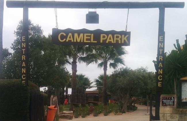 הכניסה לפארק הגמלים