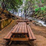 פארקי יערות לאומיים בקפריסין