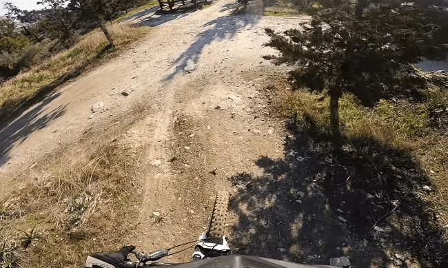 יער ריזאלייה Rizaelia - טבע ואופניים ליד לרנקה