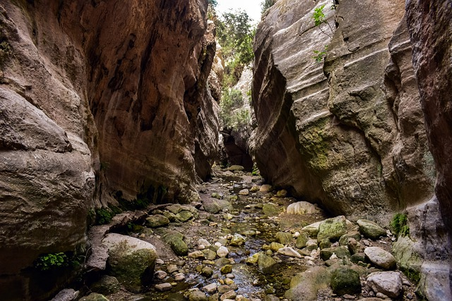 הפארק הלאומי אקמאס - אבאקאס