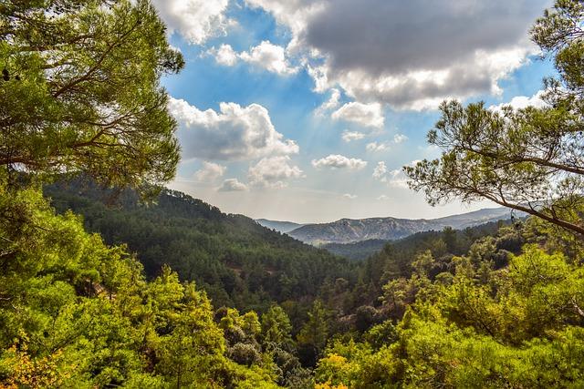 יער פאפוס - החלק שנמשך לכיוון הרי הטרודוס