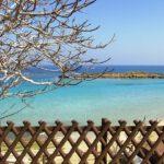 מפרץ עץ התאנה בפרוטאראס (Fig Tree Bay)