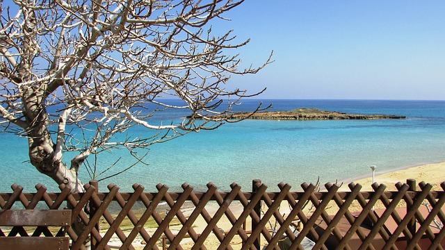 האי הקטן שמול מפרץ עץ התאנה